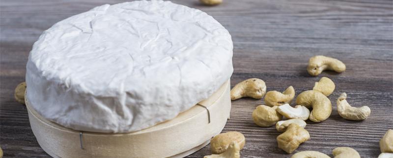 Veganen Camembert selber herstellen