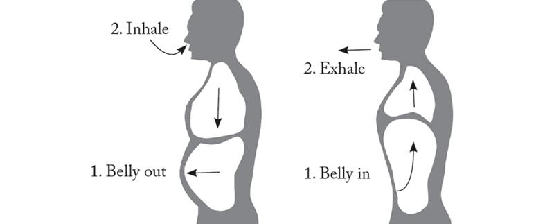 Stomach Vacuum Training